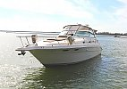 Sea Ray 330 Sundancer 1996