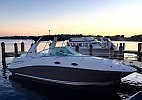 Sea Ray 260 Sundancer 2007