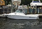 Wellcraft 240 Coastal 2003