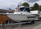 Seaswirl Striper Striper 2001