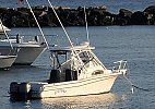 Grady-White Sailfish 282 2005
