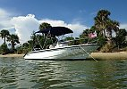 Boston Whaler 180 Dauntless 2003