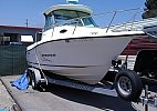Seaswirl 2100 Striper 2004