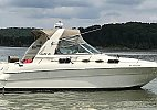 Sea Ray 310 Sundancer 1998