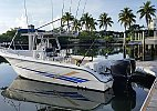 Sea Fox 287 Center Console 2003
