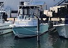 Sea Pro 220 Walk Around 2005